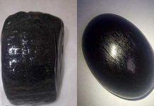 Batu Akik Fosil Black Wood