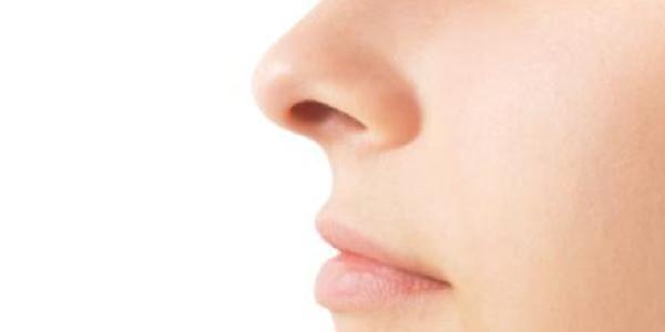 Ilustrasi Hidung