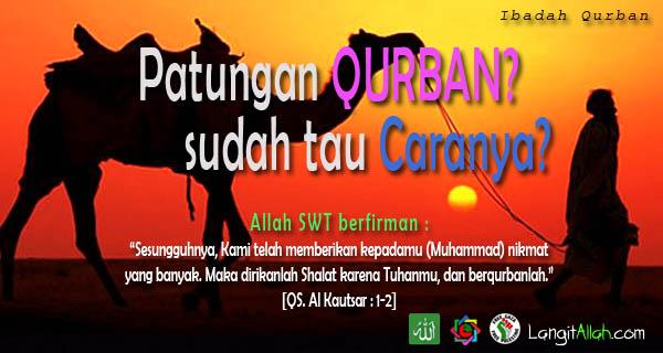Cara Patungan Qurban Hewan Kambing Sesuai Sunnah Rasulullah CARA PATUNGAN QURBAN HEWAN KAMBING SESUAI SUNNAH RASULULLAH