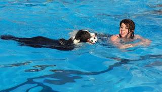 Berenang dikala hamil ialah salah satu acara yang sangat menyenangkan Berenang Saat Hamil Manfaatnya Luar Biasa, Ini Aturannya Biar Aman!