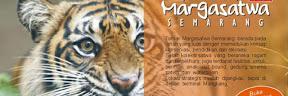 Bonbinnya Semarang Yang Koleksinya Lengkap Kebun Binatang Mangkang, Bonbinnya Semarang Yang Koleksinya Lengkap