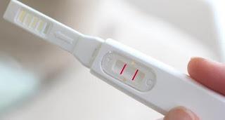 Mungkin Anda yaitu salah satu dari sekian banyak ibu hamil yang nyata hamil tapi tidak  Positif Hamil Tapi Tidak Ada Tanda Kehamilan