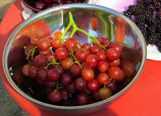 Boleh dan tidaknya makan buah anggur ketika hamil masih banyak diperdebatkan Bolehkah Ibu Hamil Makan Buah Anggur Merah ?