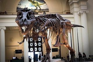 Dinosaurus ialah kelompok binatang purbakala dari klad Dinosauria Kenapa Di Indonesia Tidak Ditemukan Fosil Dinosaurus?