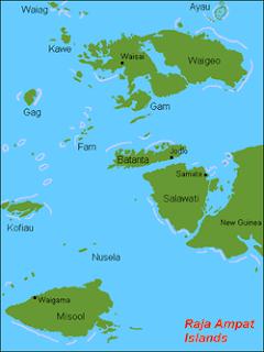 Kabupaten Raja Ampat merupakan salah satu kabupaten di provinsi Papua Barat  Sejarah Kerajaan di Kepulauan Raja Ampat